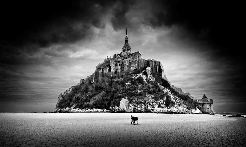 The Dog with no Head in Mont St Michel